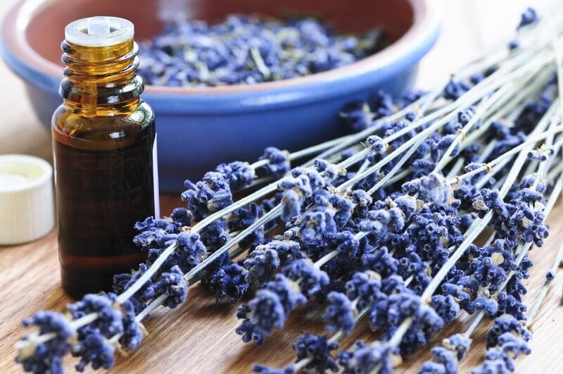 Five Essential Oils I Use Every Day