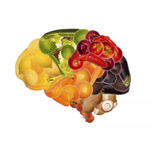 the gut/ brain connection