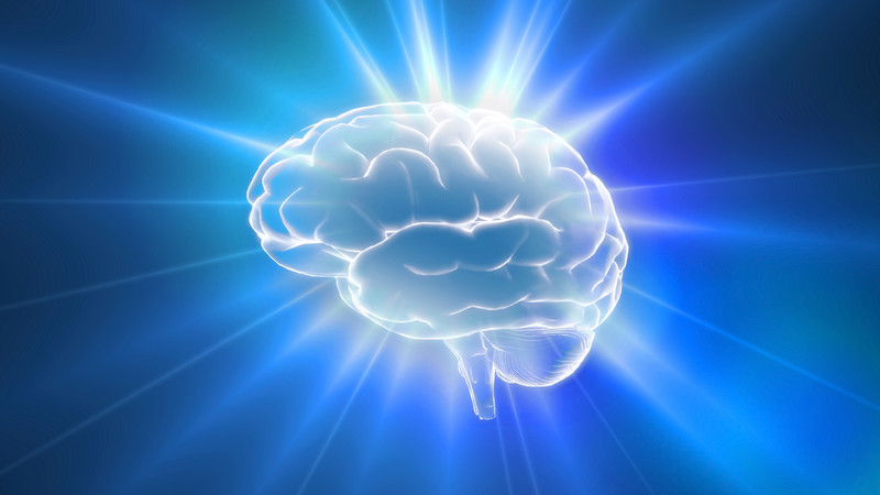 Acetyl-L-Carnitine and Brain Health