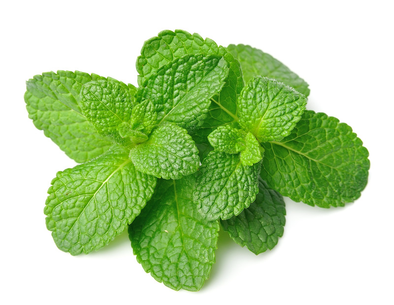 Five Everyday Uses For Peppermint Essential Oil