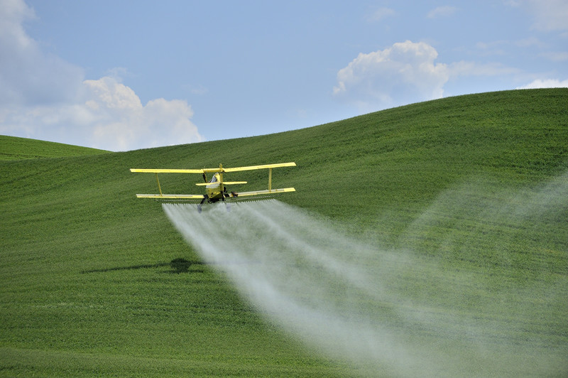 Two Ways To Detoxify Glyphosate